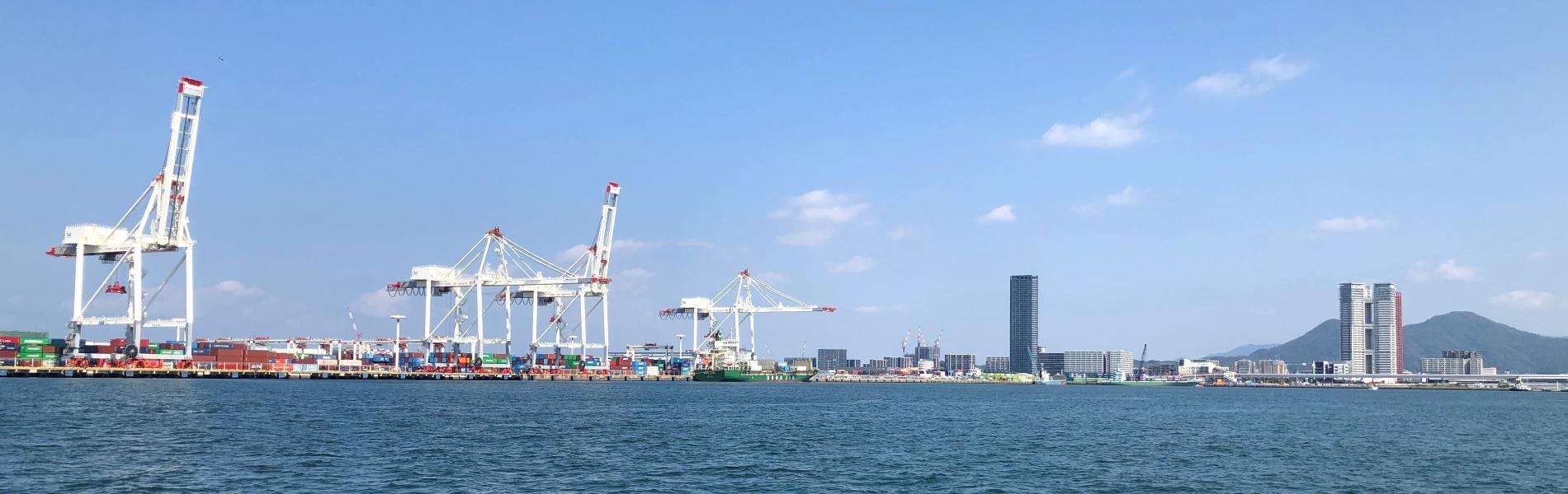 朝の港の風景